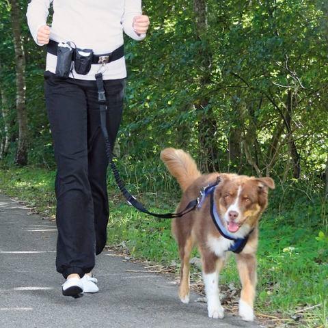 Комплект для бега с собакой Trixie Hands Free