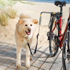 Крепление на велосипед для прогулок с собакой Trixie Biker-Set de Luxe