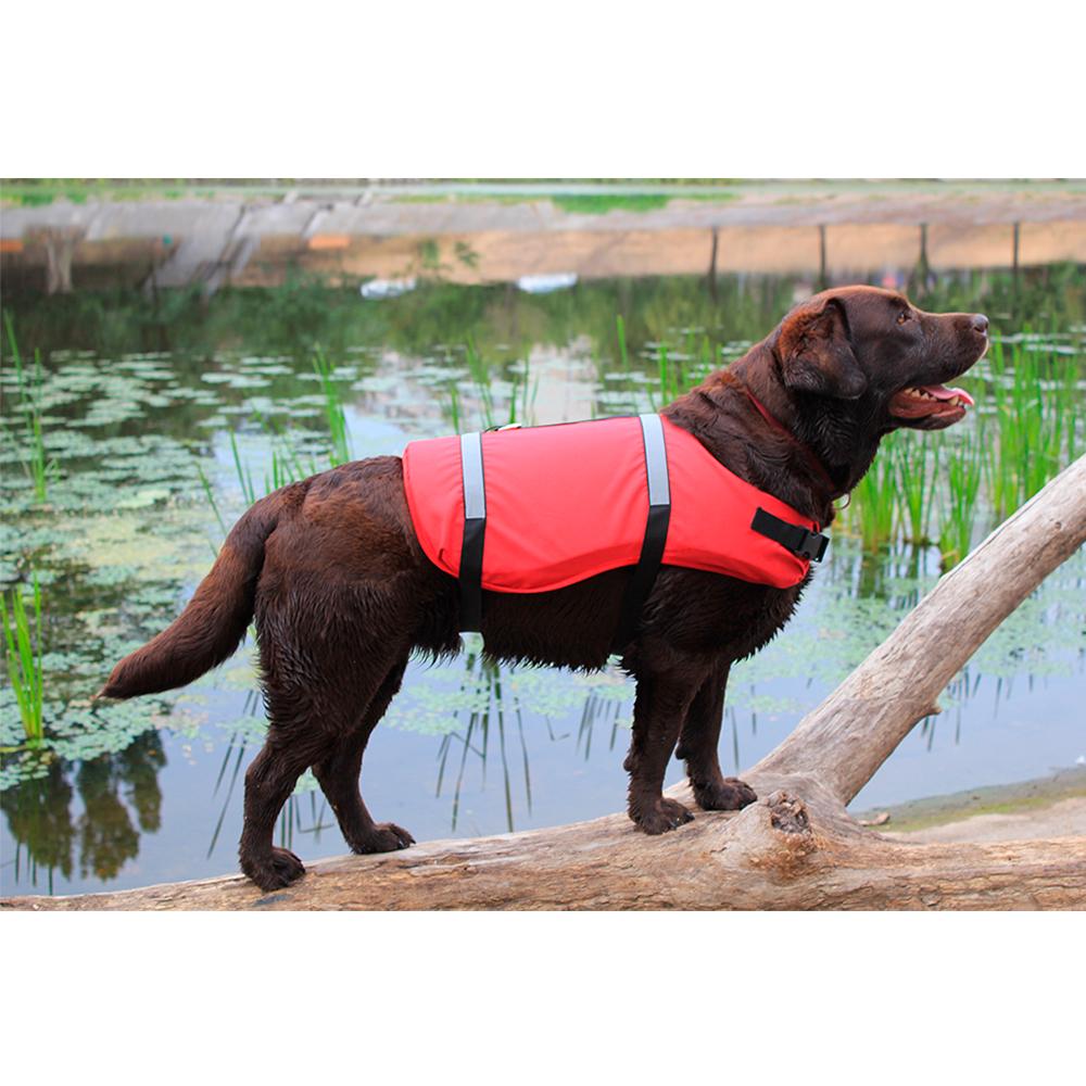Спасательный жилет для собак ACTIVDOG, для средних пород