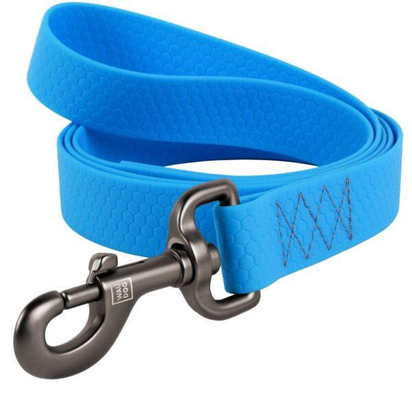 leash-blue