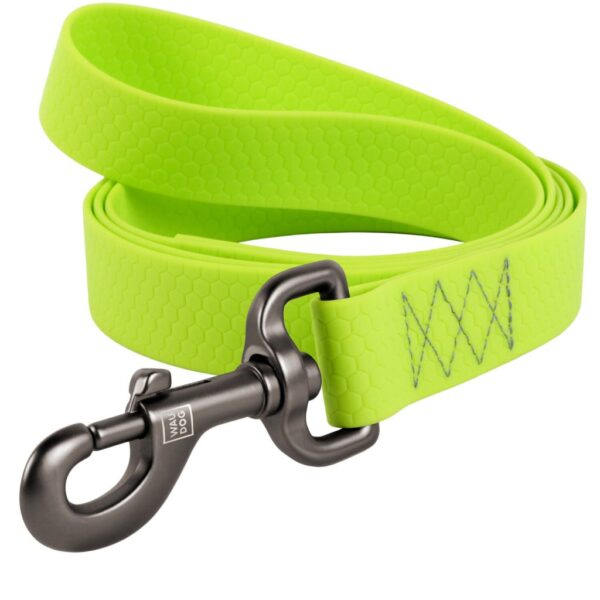 leash-green